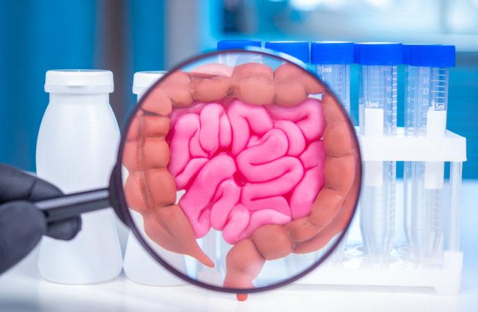 Pourquoi et comment équilibrer son microbiote?