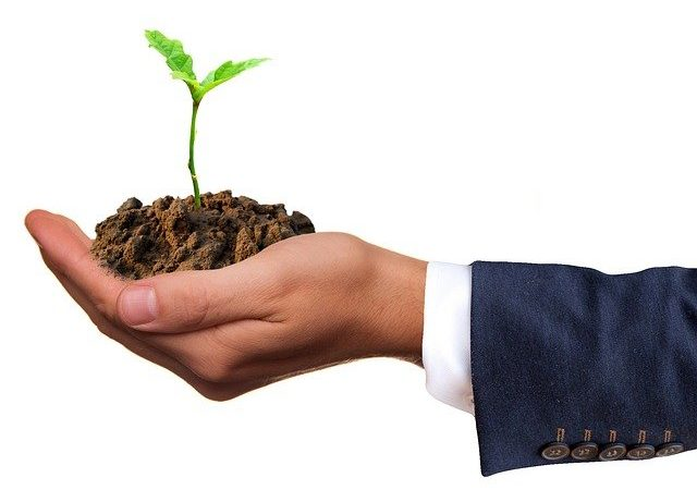 Produits HVE : les légumes qui protègent notre environnement.