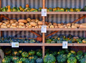 Le développement des ventes de produits locaux