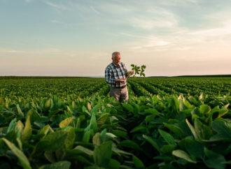 Comment l'IA vient aider l'agriculture