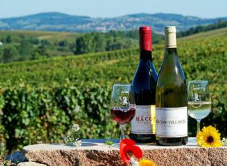 Quels mets déguster avec les vins de Bourgogne ?