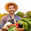 Pourquoi préférer des fruits et légumes bio au quotidien?